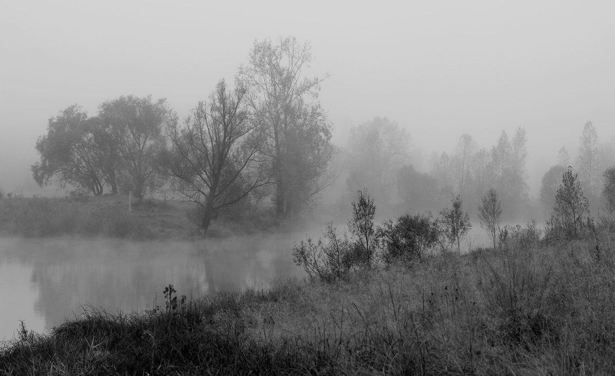 Туман - Дмитрий Арсеньев