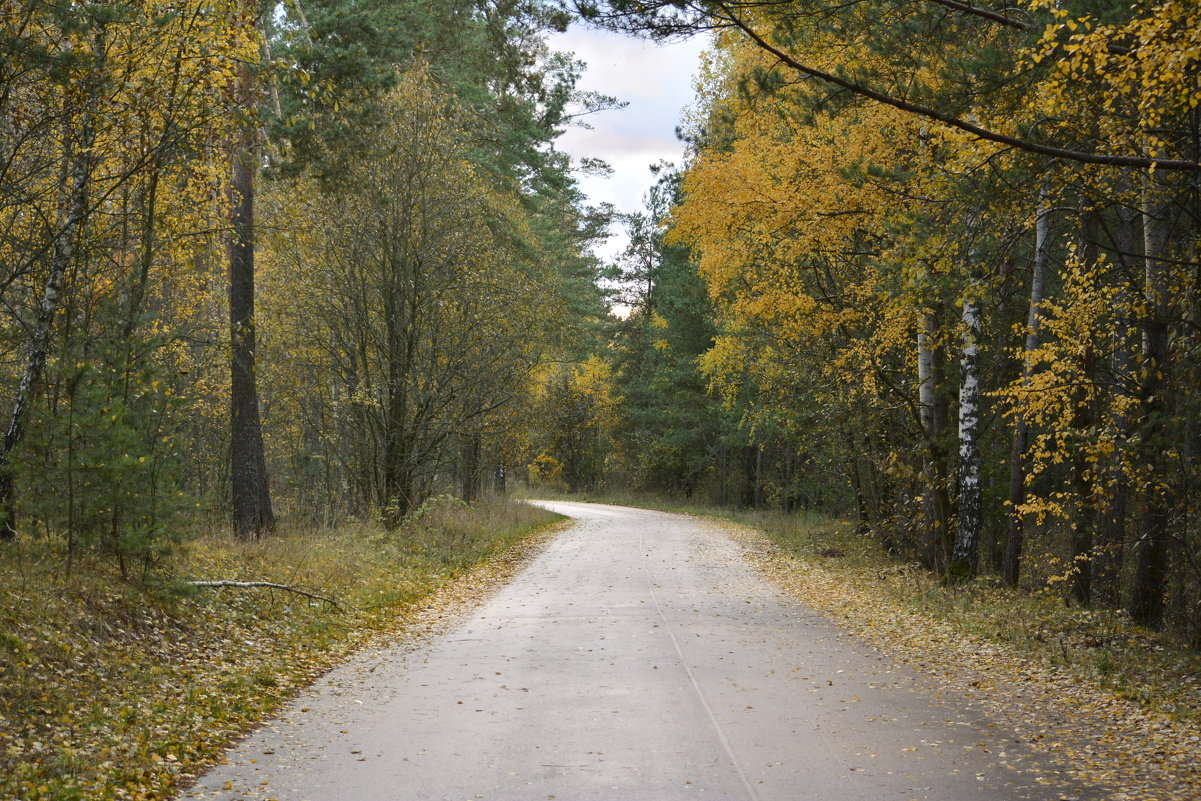 Дарога в осень - Denis Valerevich