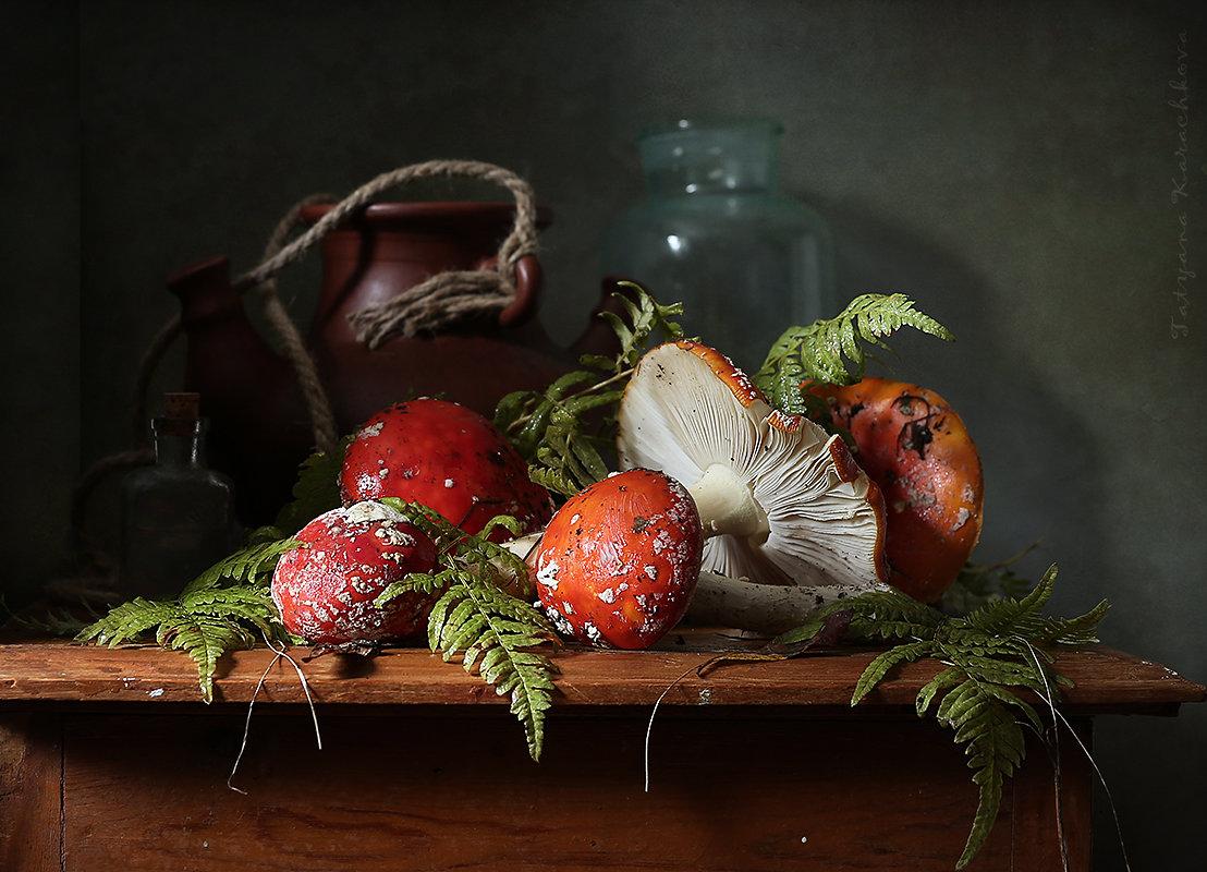 Настойка на мухоморах - Карачкова Татьяна
