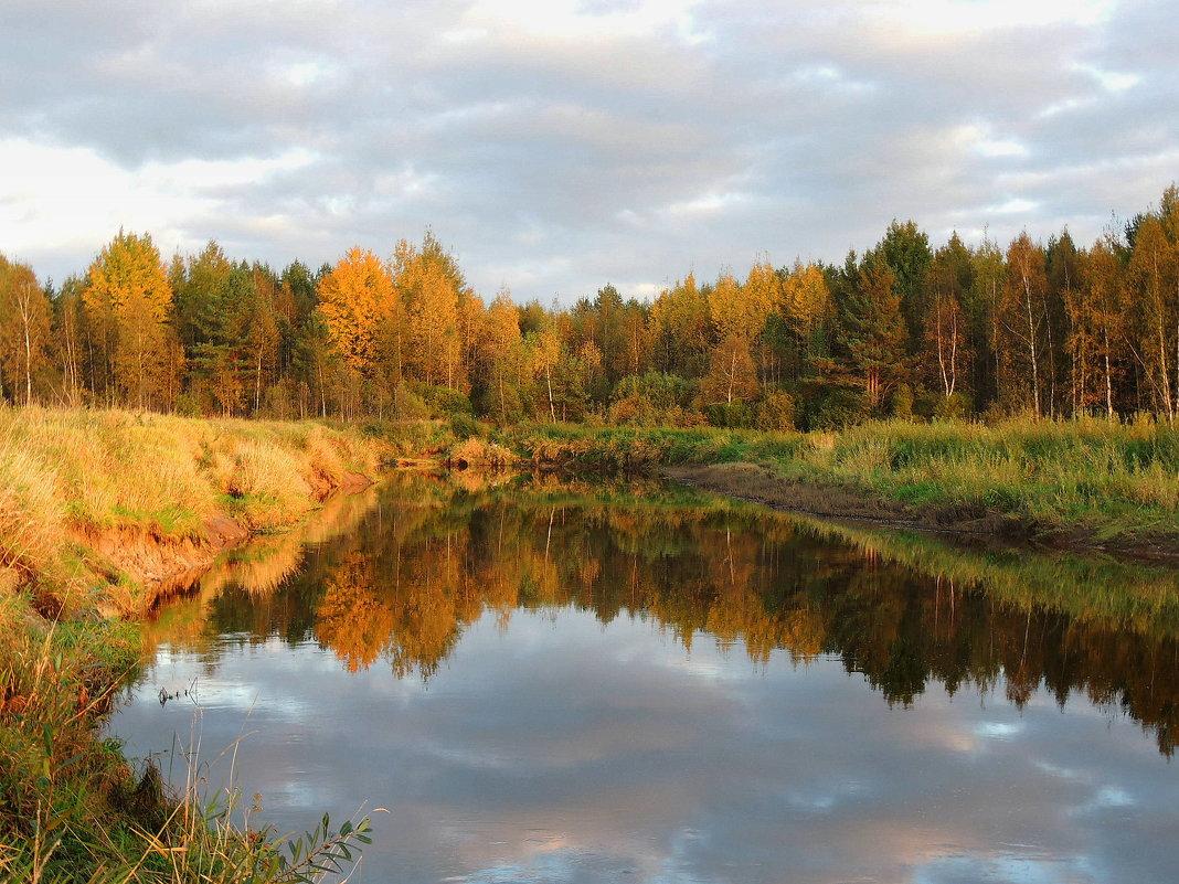 Осень золотая.Тверца - Павлова Татьяна Павлова