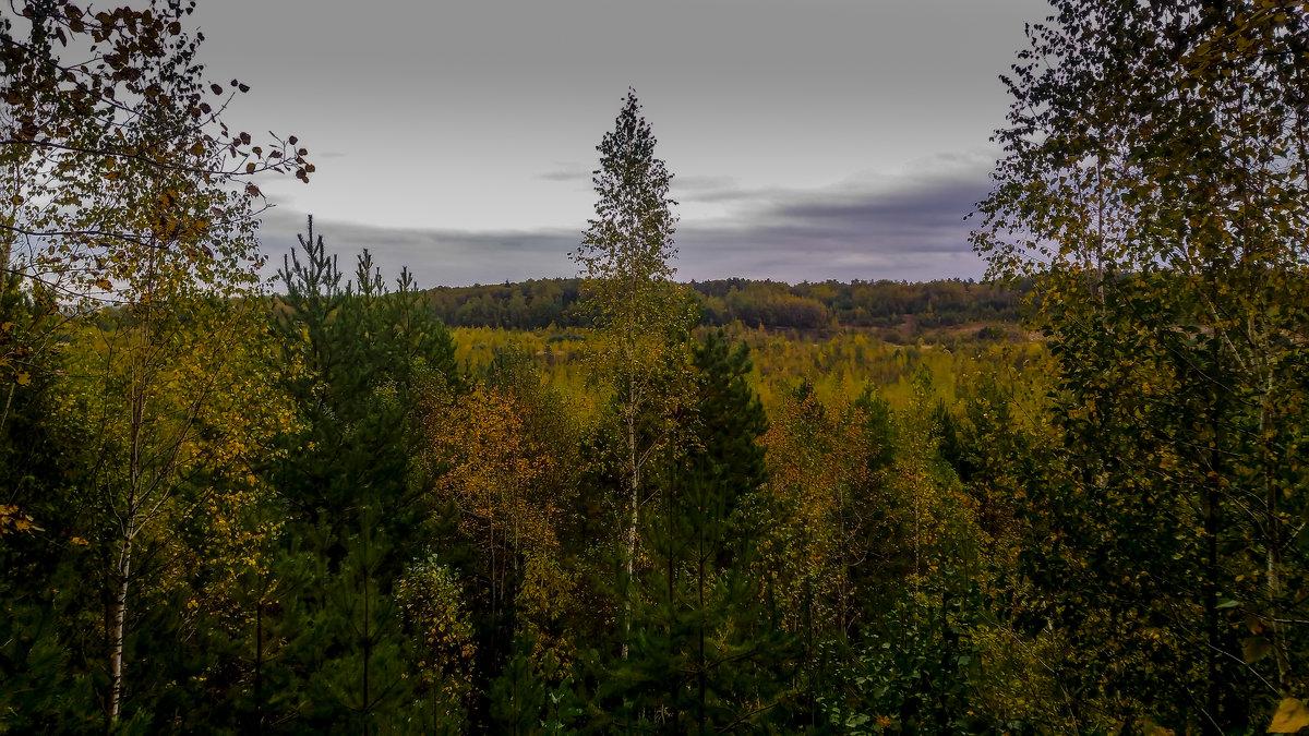 Осень - Вячеслав Печенин