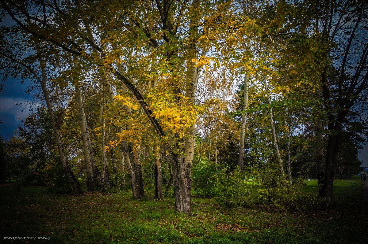 Осень! - Ирина Антоновна