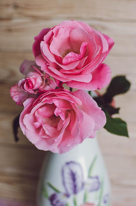 Розовые розы - Ivanova .