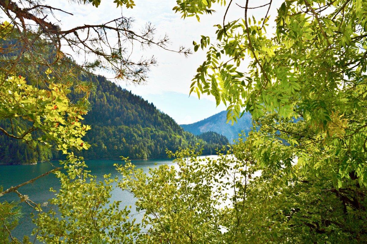 """Вид с горы на озеро """"Рица"""". Абхазия. - Александр Максименко"""
