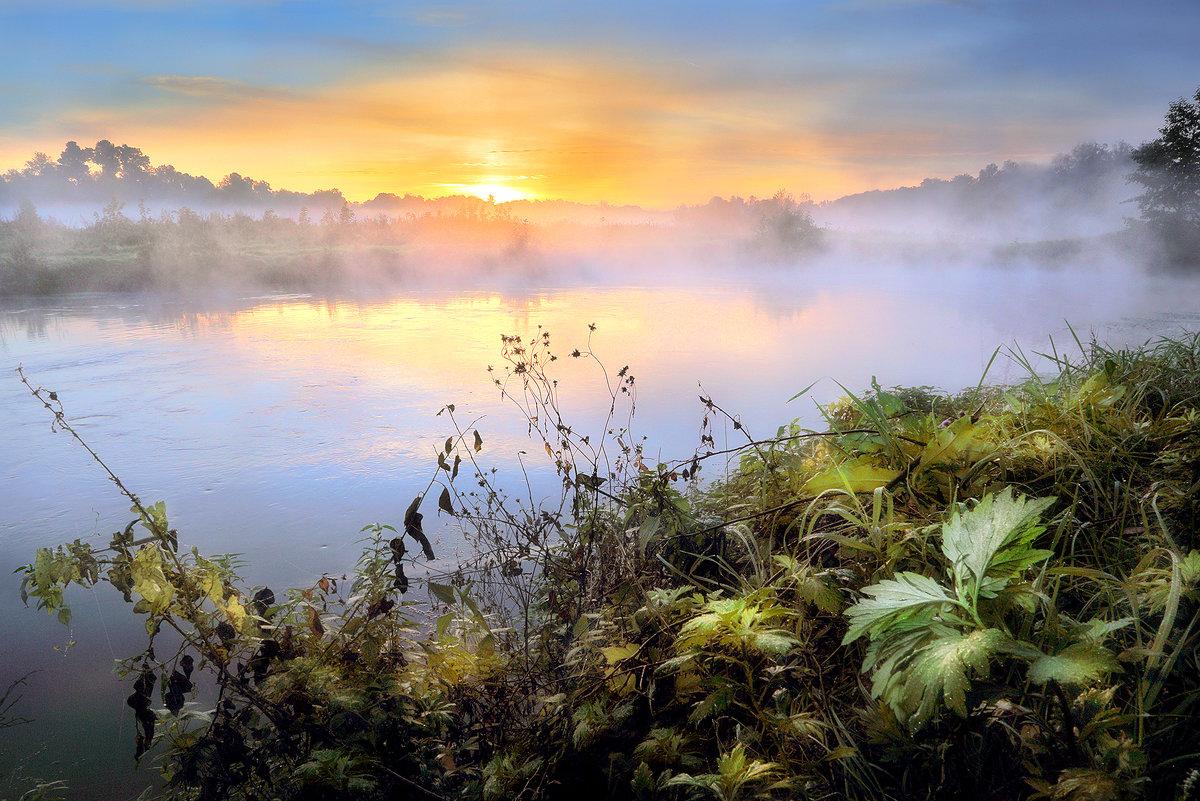 Утро воскресного дня.... - Андрей Войцехов
