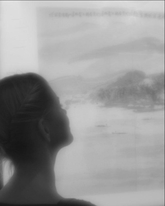 Поэзия пейзажа - galina bronnikova