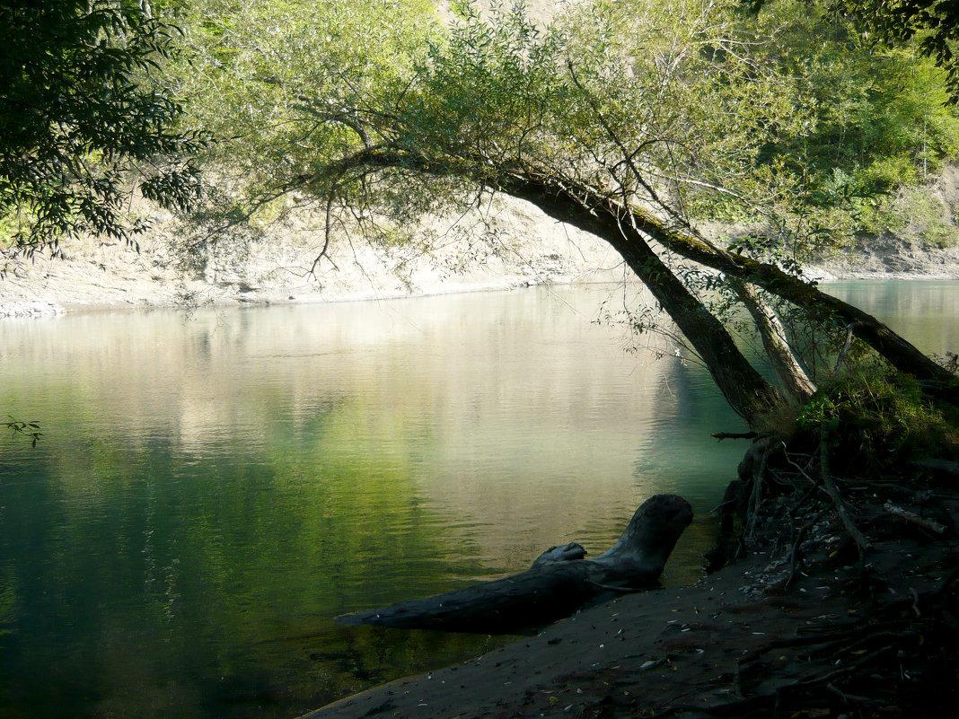 Река Белая. - Надежда
