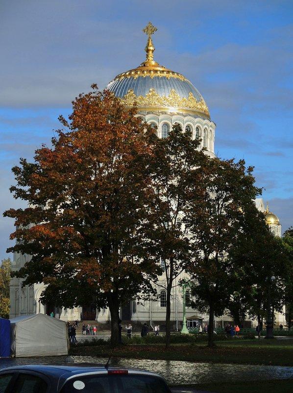 """скоро """"золотая осень"""" - sv.kaschuk"""