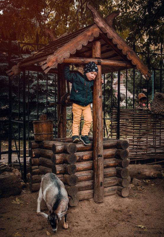 Спасались он голодных коз - Anna Enikeeva