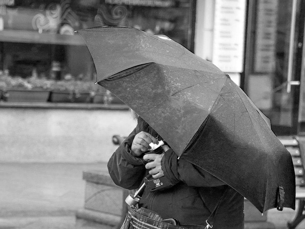 Дождь не помеха для фотографа. - Ирина Токарева