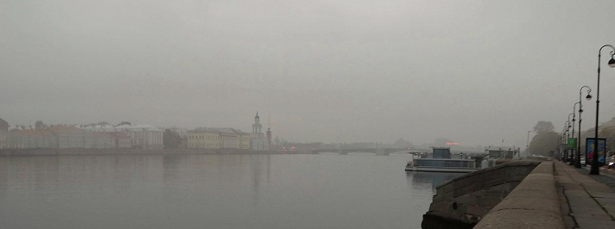 Туман... - Владимир Гилясев