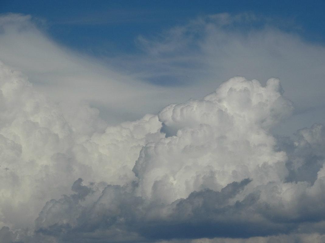 облака Тбилиси - Alla Swan