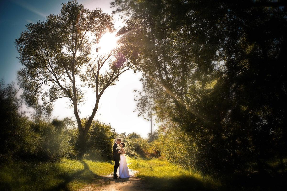 свадебная прогулка - Andrey Stanislavovich