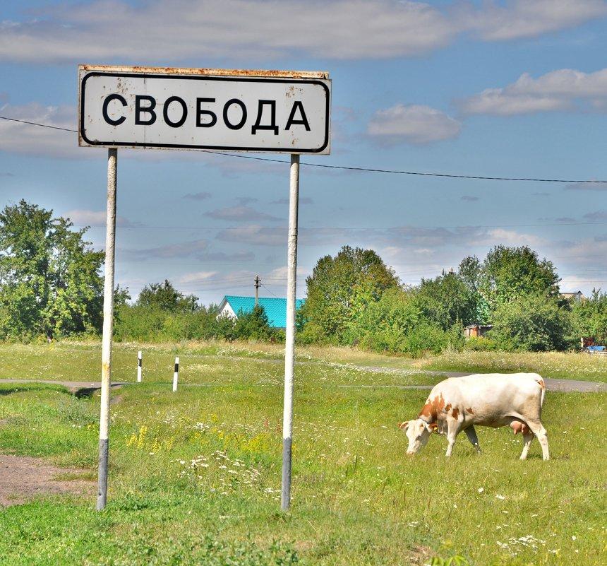 свобода - Иван Владимирович Карташов