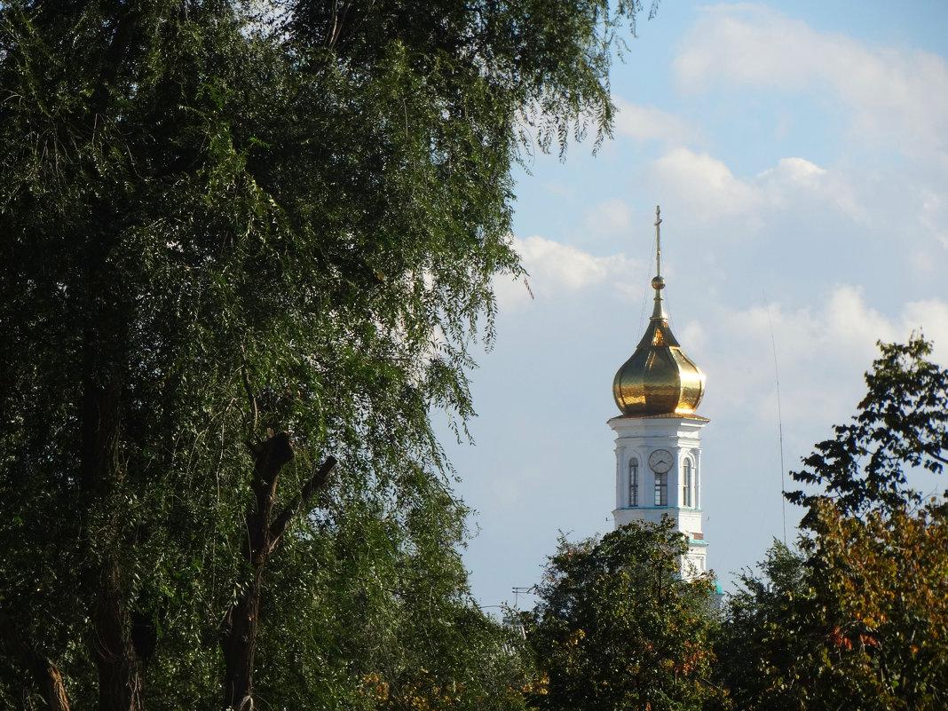 Купол Кафедрального собора... - Тамара (st.tamara)