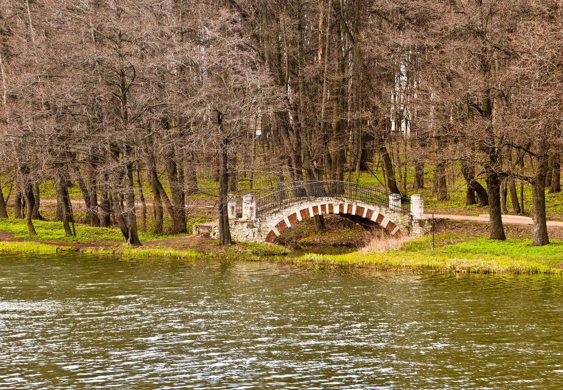 Старый мост - Владимир Брагилевский