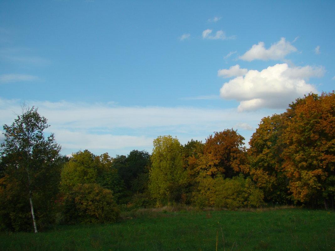 Осень... - марина ковшова