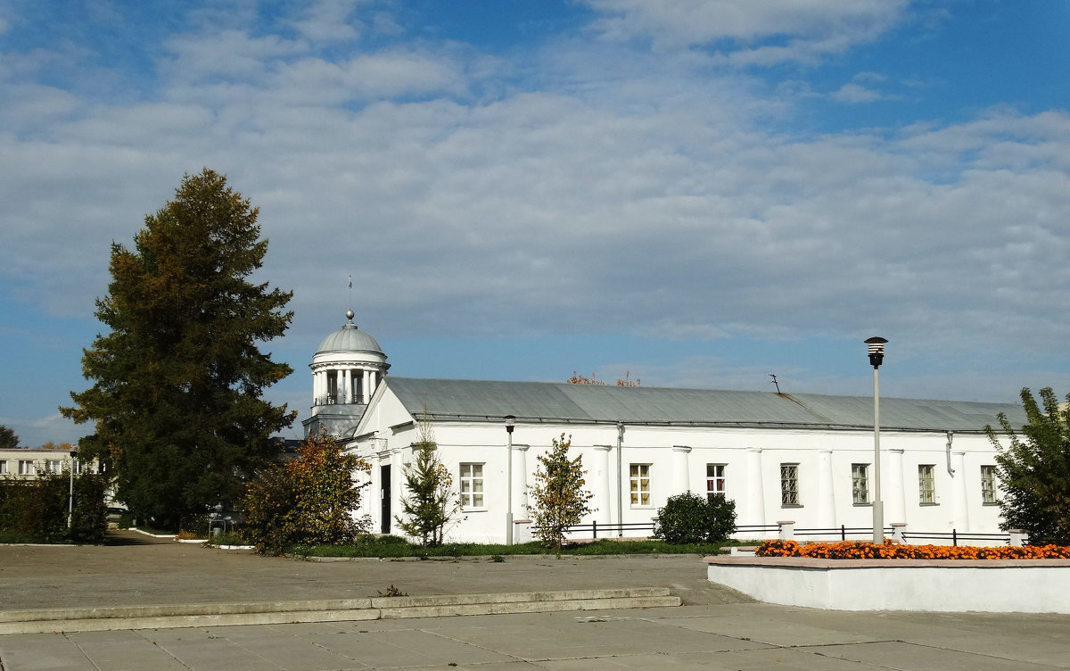 Городской музей - Александр Подгорный
