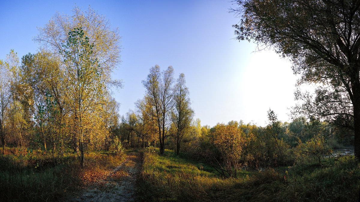 Осенний пейзаж в лучах закатного солнца. - Vadim Piottukh