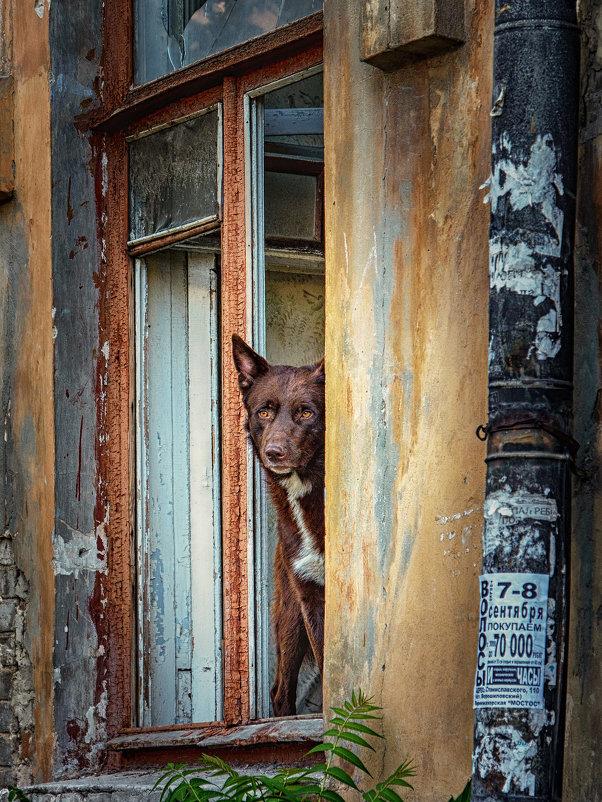 Теперь это мой дом - Вадим