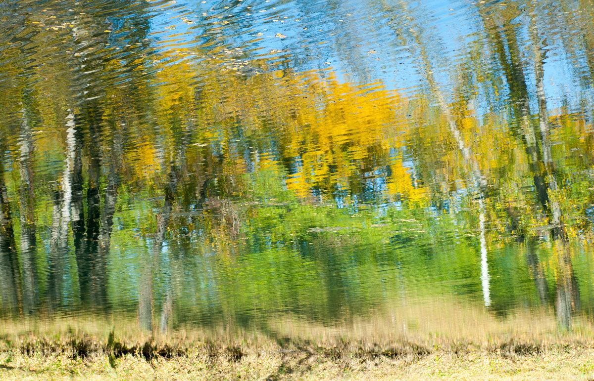 Осень - Сергей Тарантин
