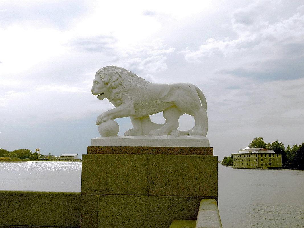 Питерский лев. - Лия ☼