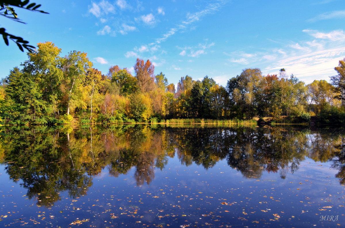 Осень в воду заглянула... - *MIRA* **