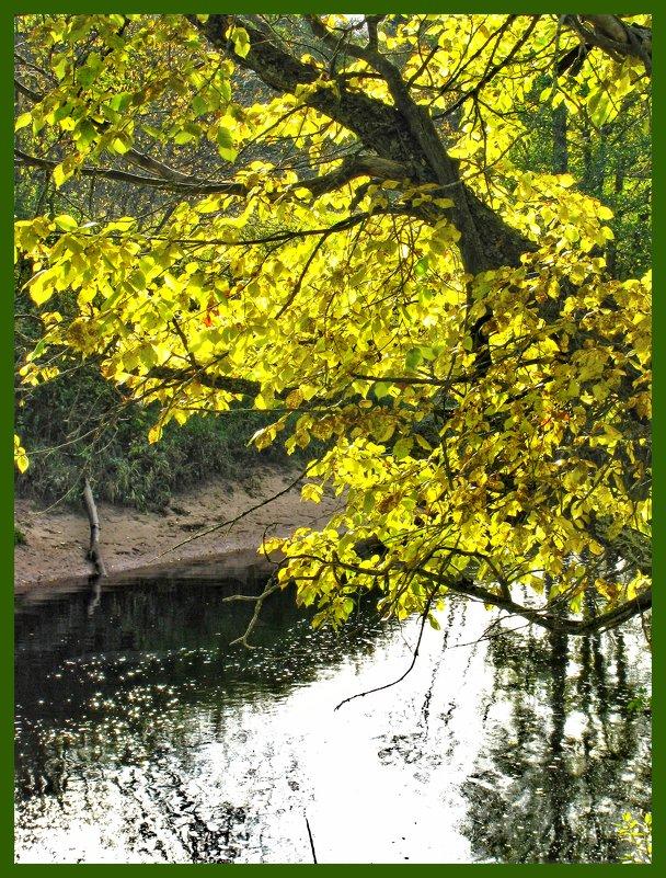 Над речкой - Наталья