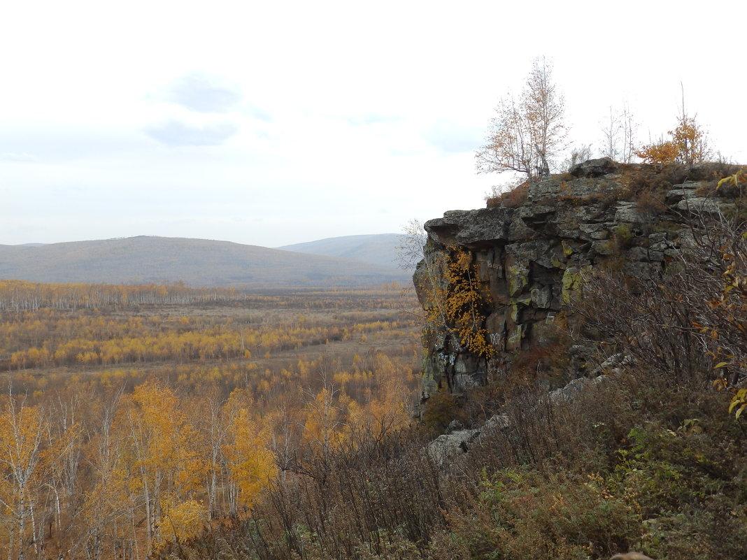 Березка на скале - Анна