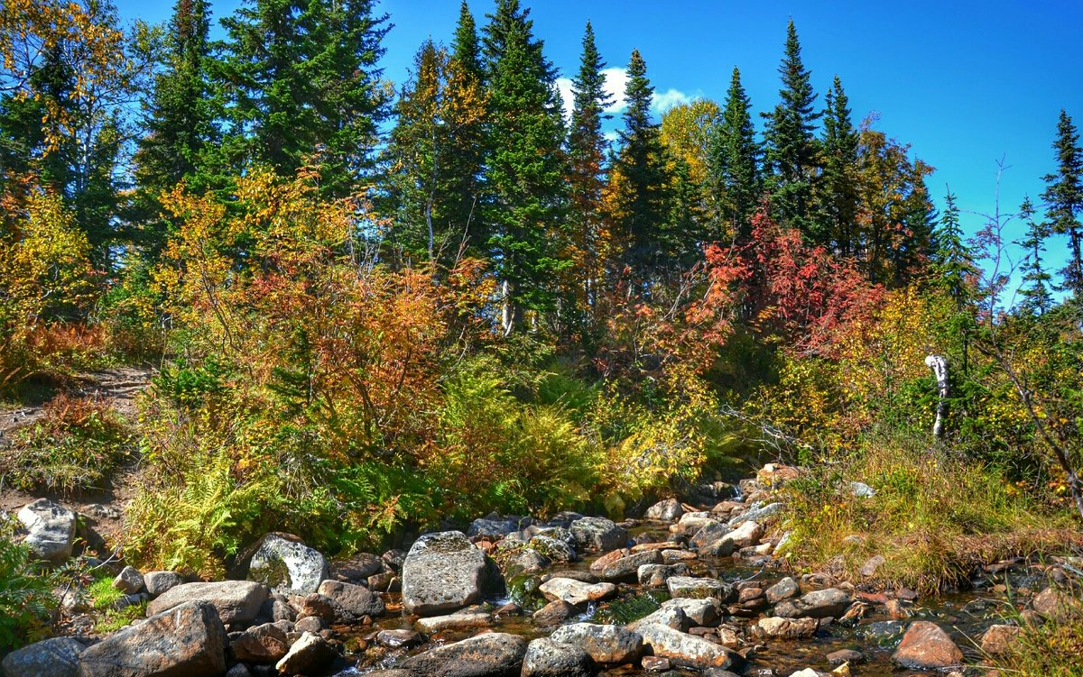 Осень в горах - Милешкин Владимир Алексеевич