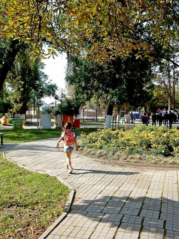 Октябрь в парк пришел - Владимир
