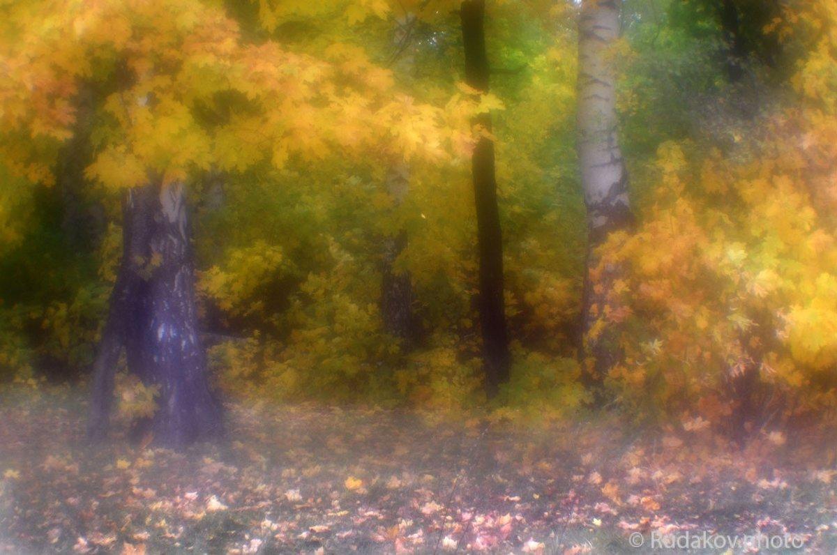 осень в монокле-2 - Сергей