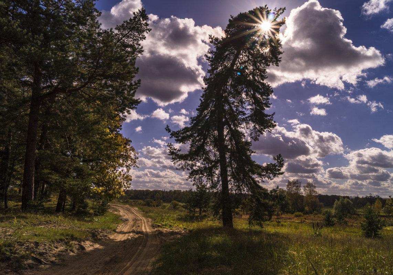 Я стану другой - как простая травинка - чтобы побыть с тобой хоть на день - хоть на половинку... - Александр Ковальчук