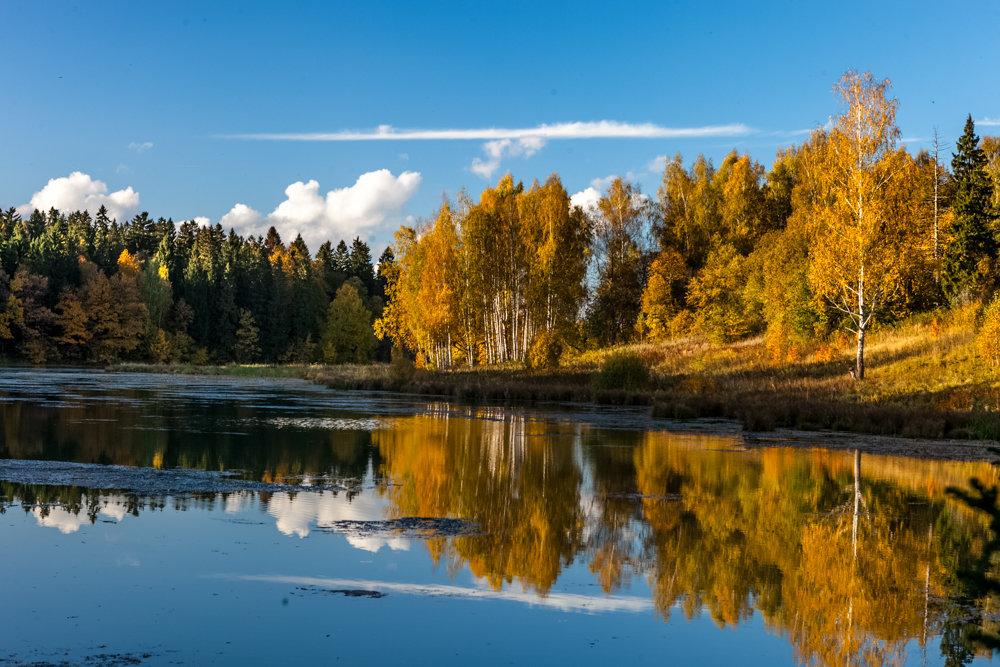 Золотая осень - Аля