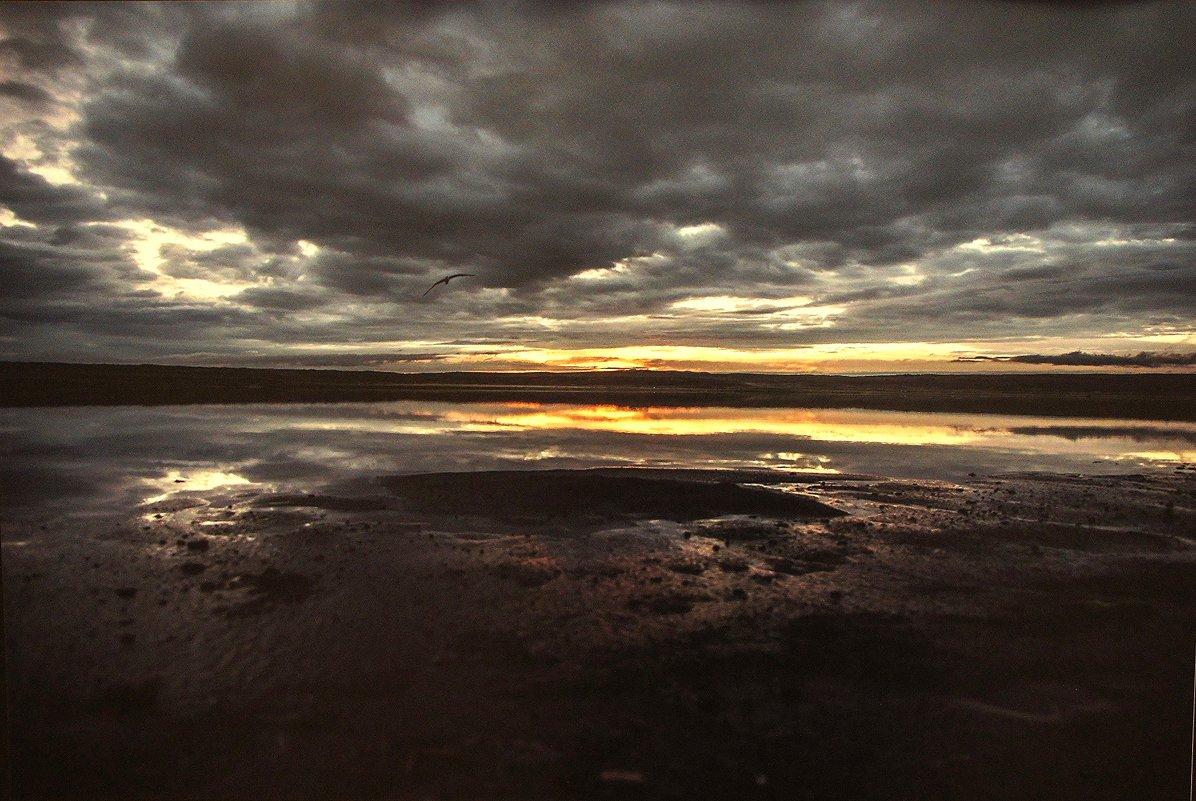 Солёное озеро Дус-Холь. Тыва. 15.08.2015 - Елена Павлова (Смолова)