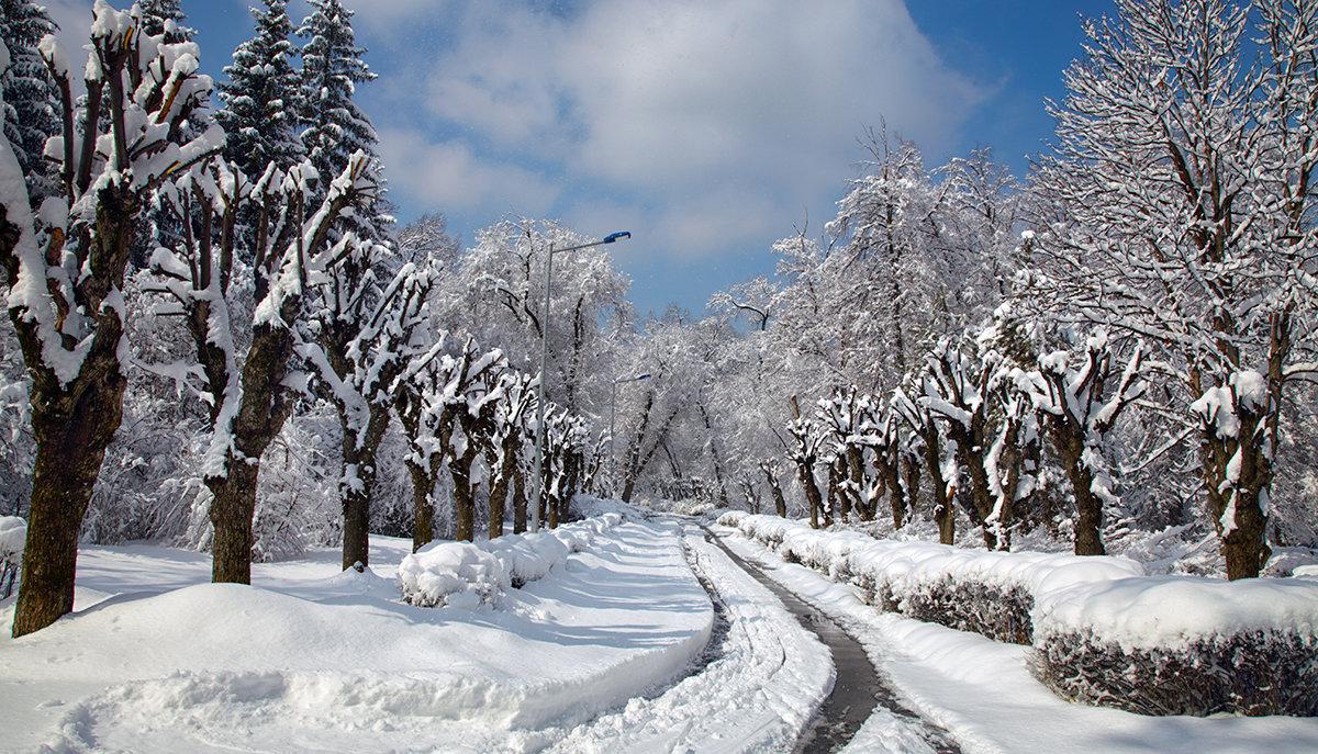 Первый снег ... - 7zan0z