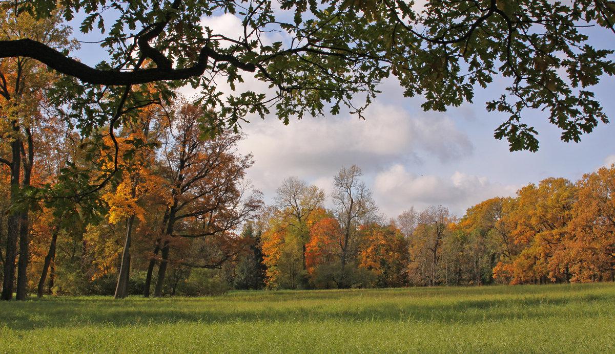 Осень в парке Царского села - Наталья