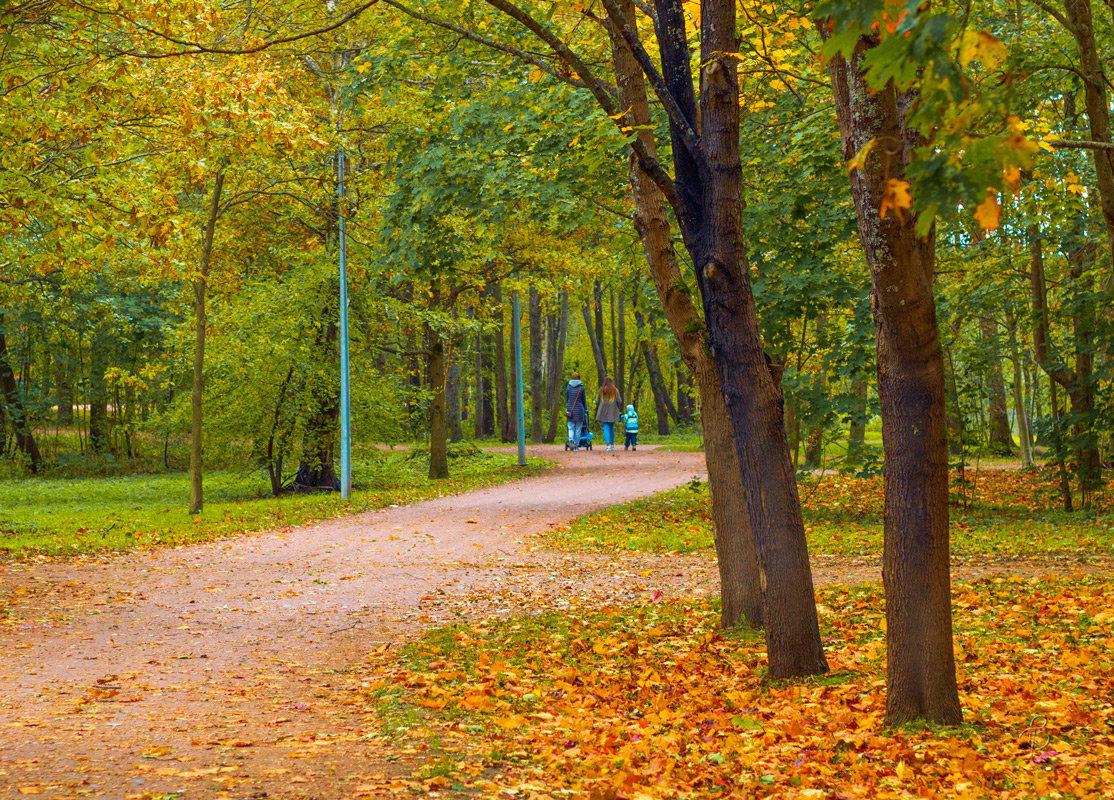 В осеннем парке 5 - Виталий