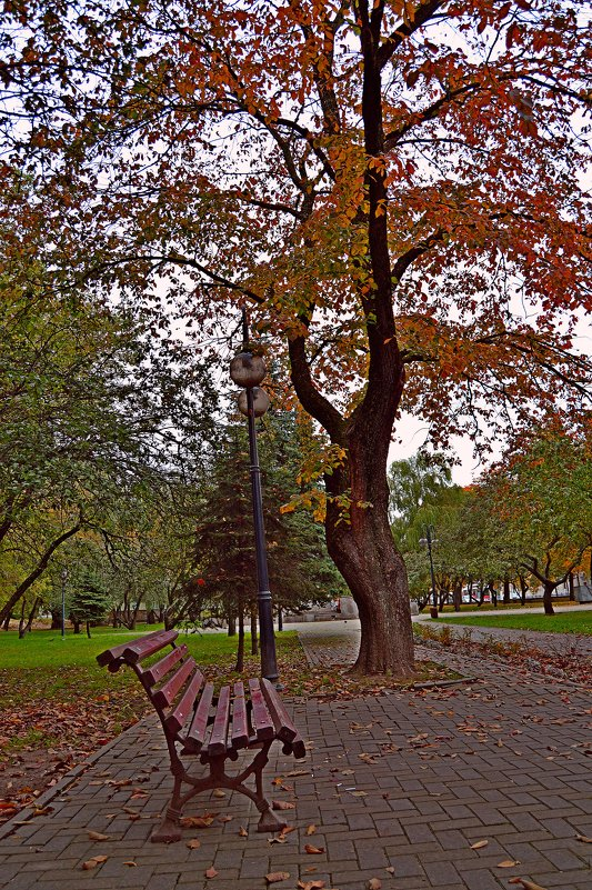 Осенний парк(1) - Vladimir Semenchukov