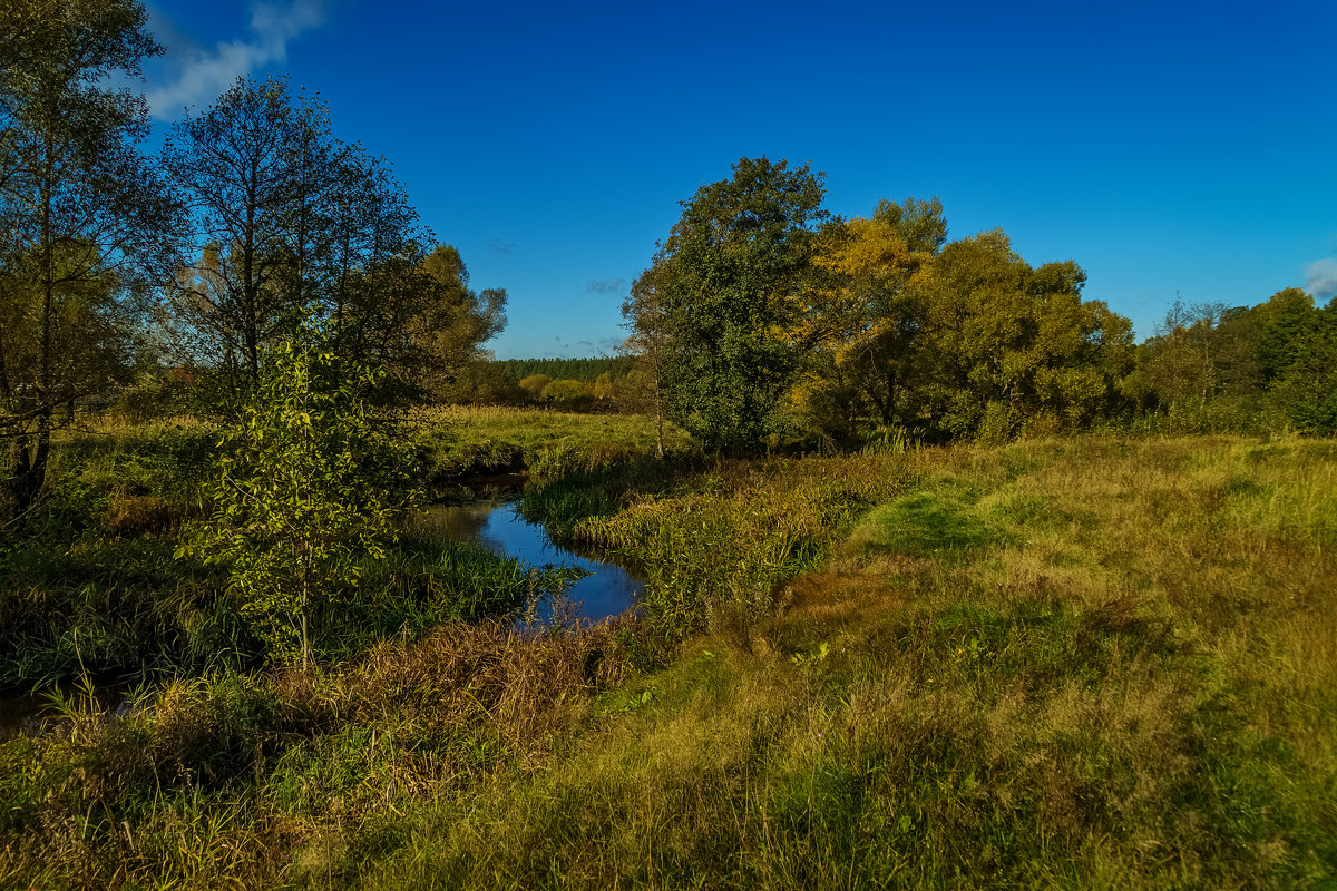 Осень 2016 река Дрезна - Андрей Дворников