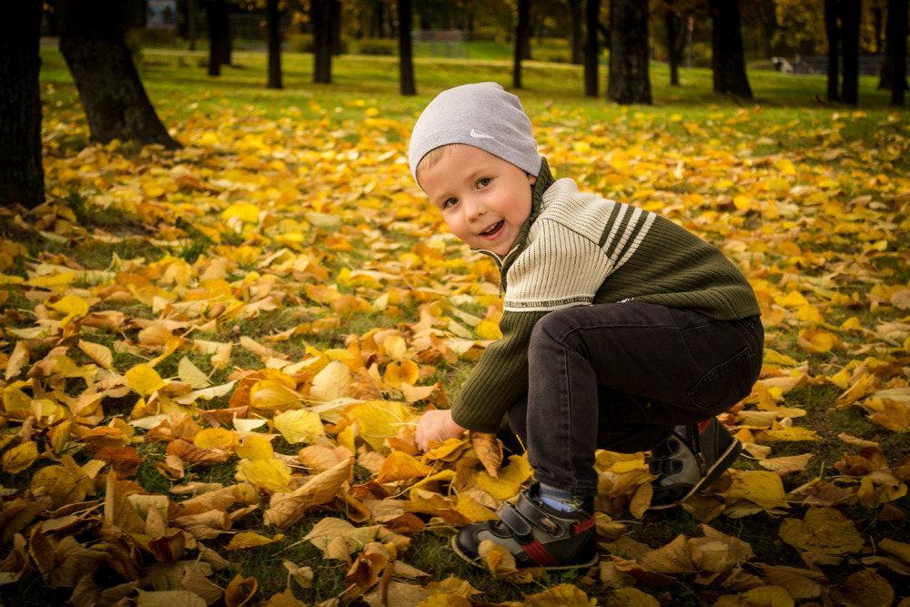 Осень пришла - Алексей Леухин