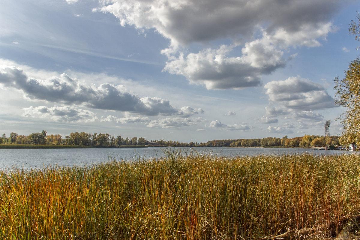река Большой Черемшан - Людмила Н