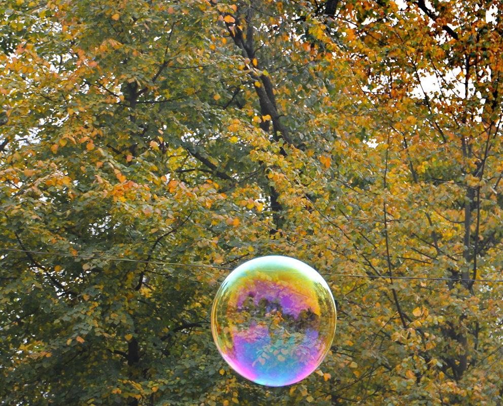 Осенний пришелец..... - Tatiana Markova