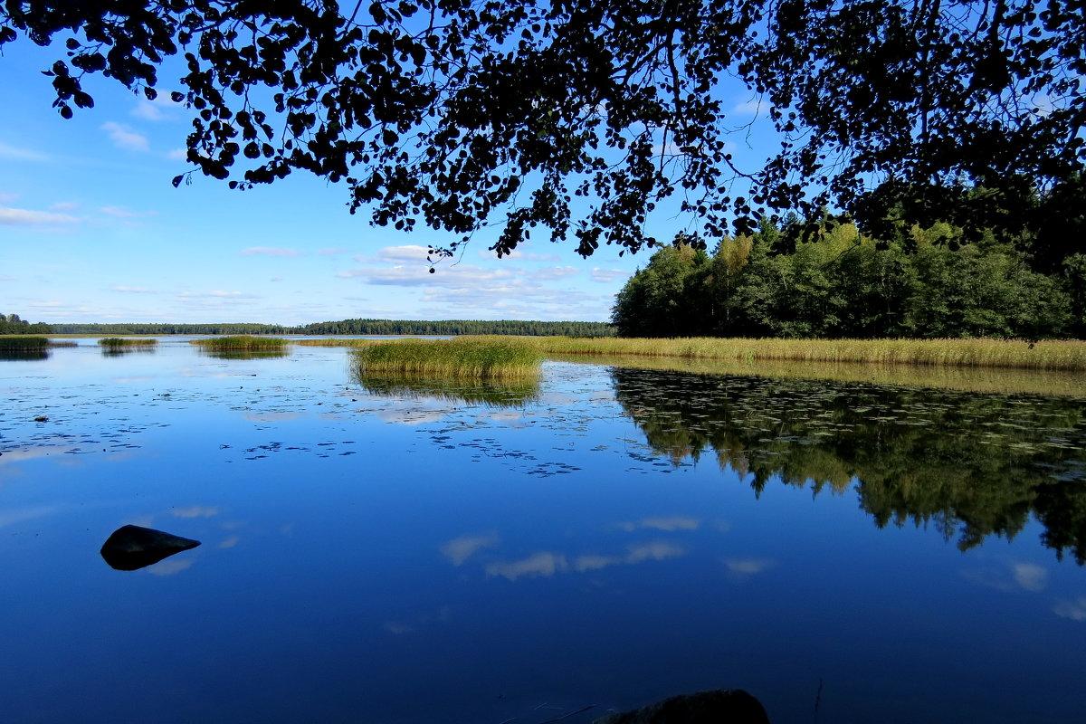 Синева сентября  (Финский залив) - Светлана
