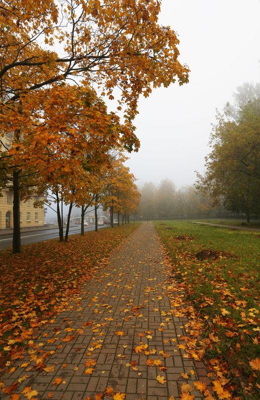 Туман - Владимир Д