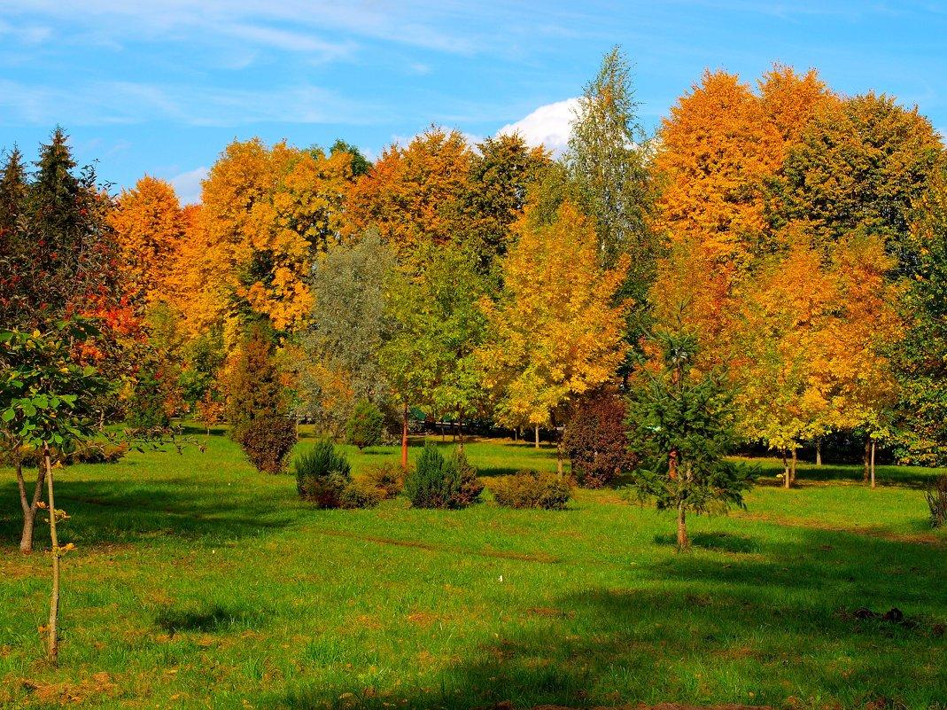 Осенний пейзаж. - Алексей Жуков