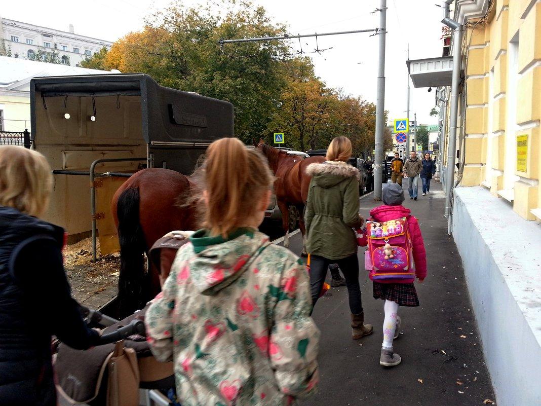 По улице коней водили... - Владимир Безбородов