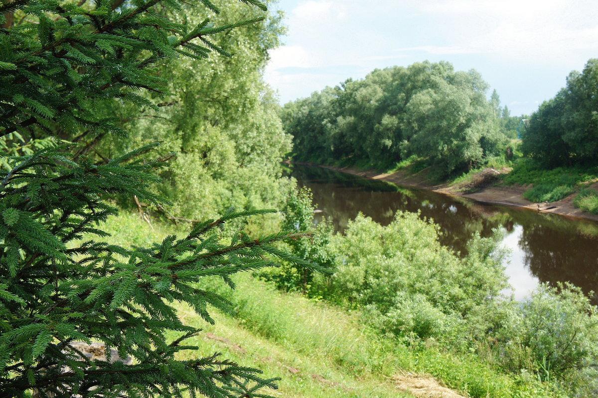 Монастырь стоит на берегу реки Полисти в живописной местности, неподалеку от реки Снежа - Елена Смолова