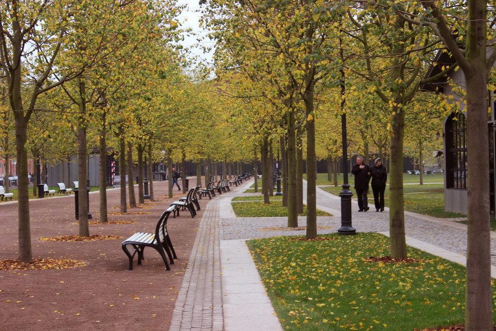 Осень в Новой Голландии - Вера Моисеева