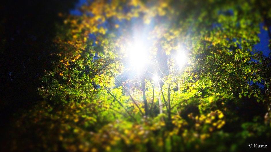 Осень, осень - Валентина Ломакина